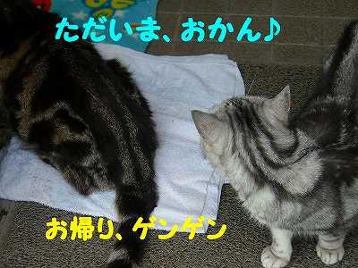P7030017_sh02.jpg